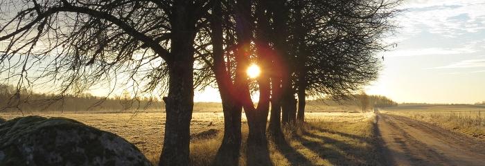 Atgriezīsies rudenīgs siltums
