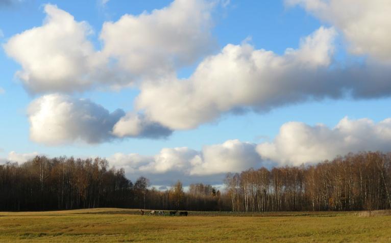 3. novembris- viena no nedaudzām saulainajām dienām.