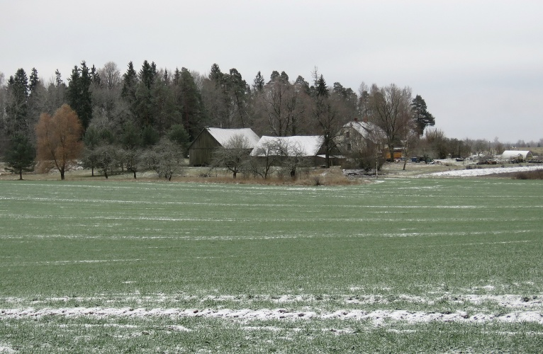 Ziemājiem šis sniedziņš vēl ir pārāk mazā daudzumā.