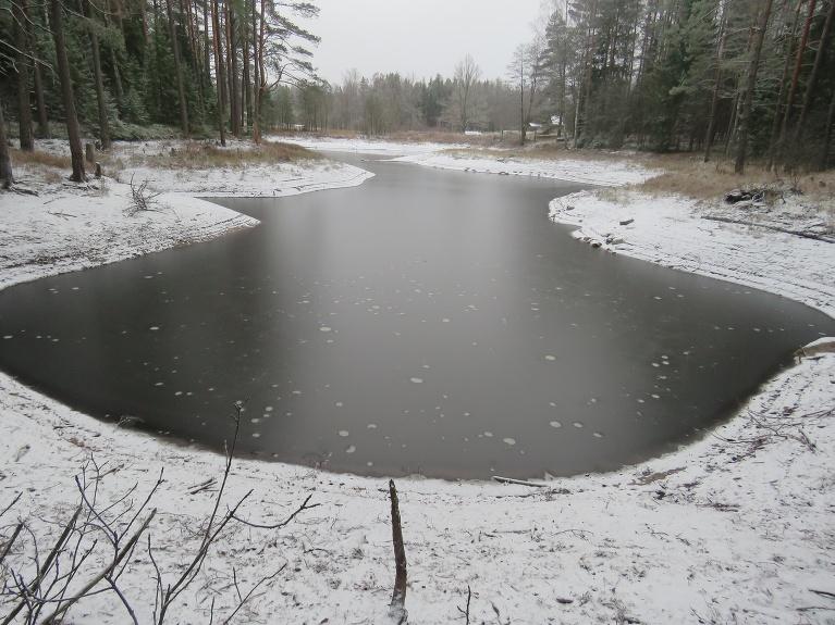 Linezers ziemā ieiet ar zemu ūdens līmeni, tas gan nav karsta procesu dēļ, bet sausuma dēļ, pilnīgi izsīkusi urdziņa, kas no tuvējā purviņa papildināja ezera ūdens krājumus.