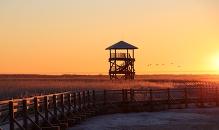 Sala rīts Liepājas ezera krastā