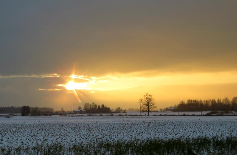 Īsos saules mirkļus gan nākas ķert kā  brīnumus.