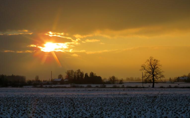 23. decembra pēcpusdienā saule iespīdējās tik uz piecām minūtēm.