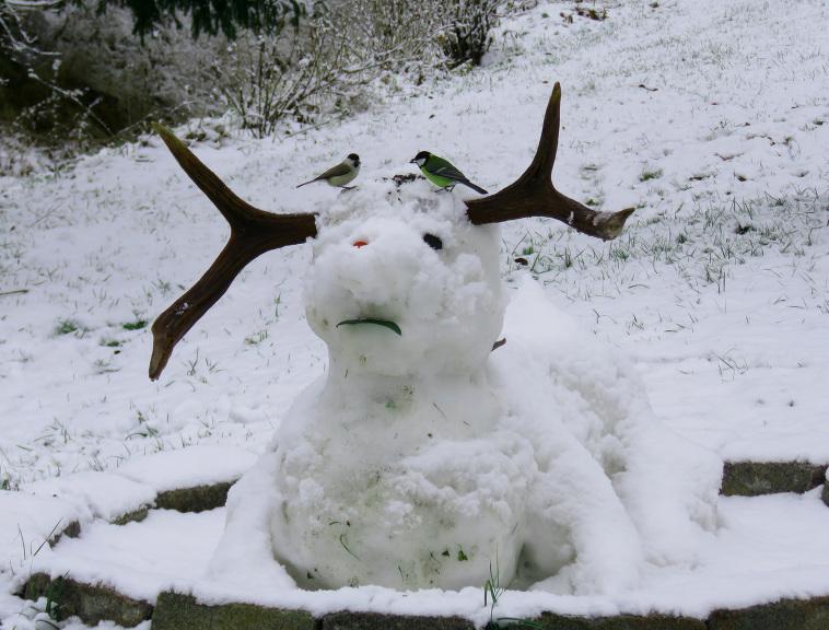 Mana vēl neizkususī sniega skulptūra vairs neizskatās neiederīga ziemas ainavā.