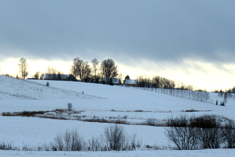 12. janvārī pie manis saule tā arī neparādās, tik nedaudz gaišāka debess maliņa iespīdas pie horizonta.