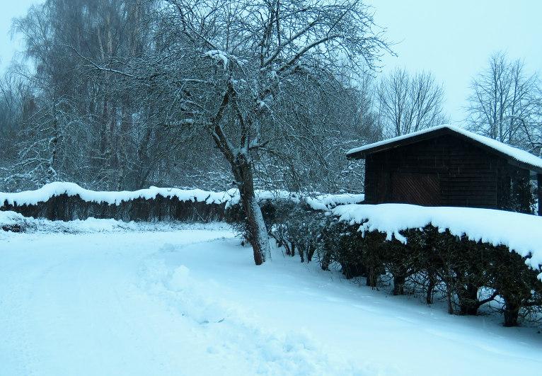 Drīz vien snigšana atsākas, diena paiet pelēcīgā baltumā.