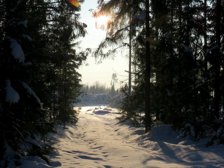 Arī mežā sniega pietiekami.