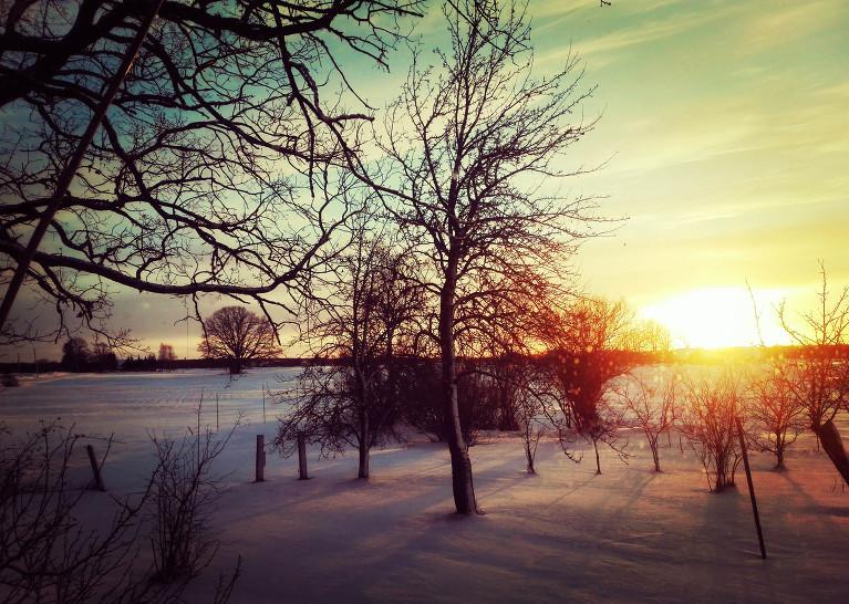 14. janvāra saulriets, Viesatas.