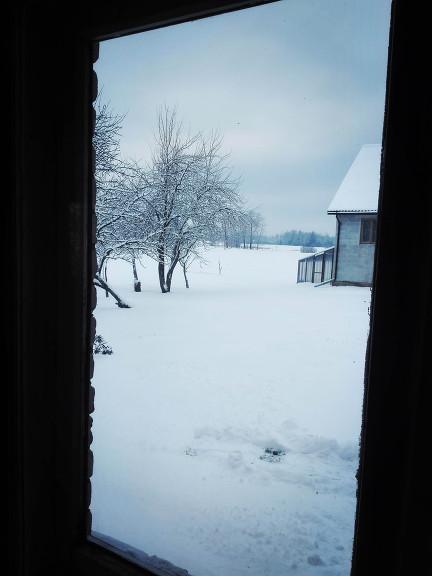 Balta Pasaule 10. janvārī. Viesatas.