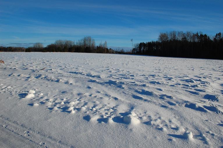 Sniega klajums, 16. janvāris. Viesatas.
