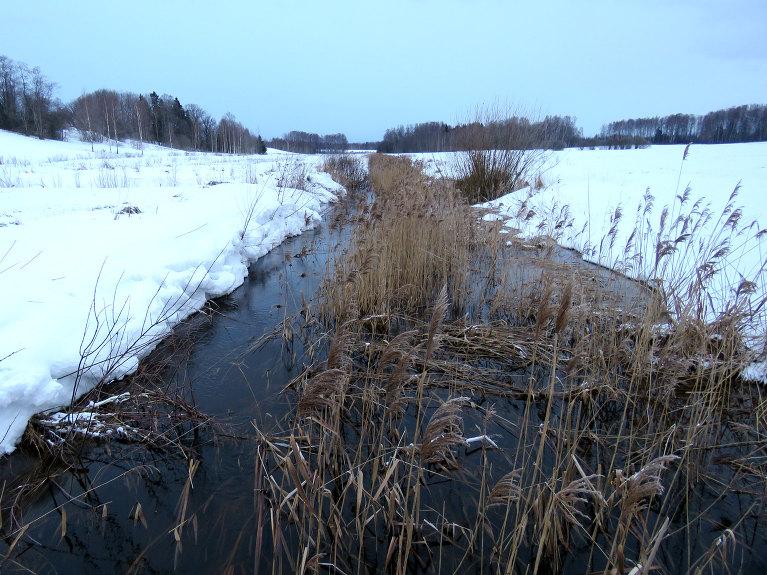Mazajās upītēs paaugstinās ūdens līmenis (13.02.), bet sniegs vēl tā pa īstam nemaz nav sācis kust.