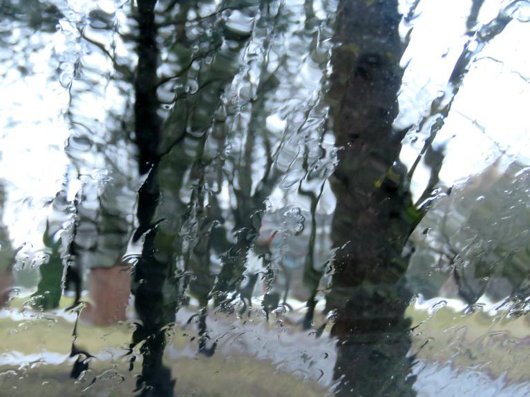 5. marts - līst, kūst, vakarpusē sāk piesalt.