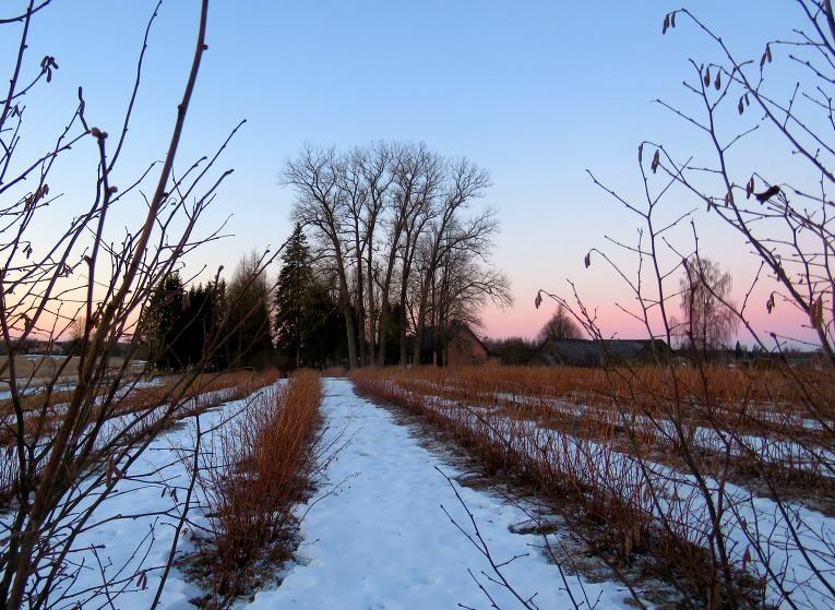 6. marta saullēktā -9,4C.