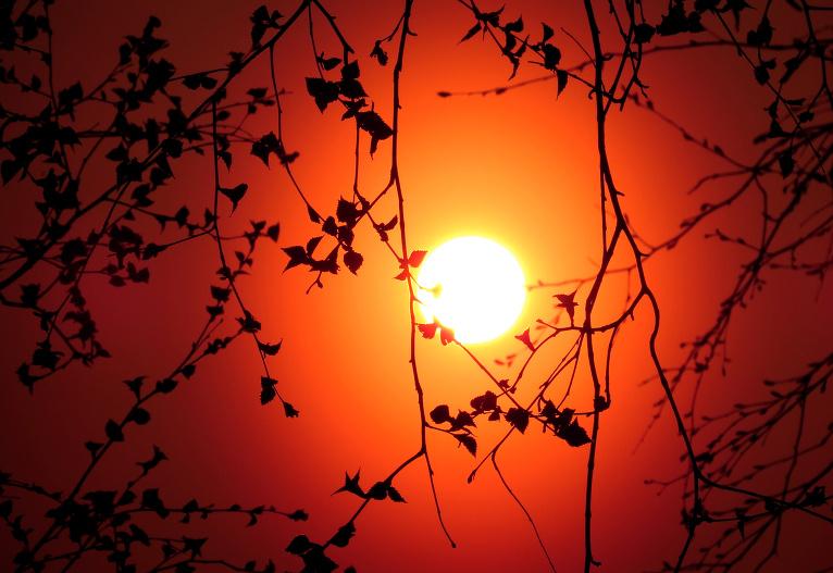 Arī vakarā saule kā sarkana bumba