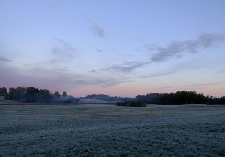 4. maija rīts- stindzinoši auksts.