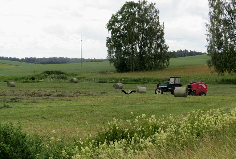 2. jūlija pusdienlaiks- skriešanās ar laiku- kurš ātrāks - zemnieks vai lietus mākoņi.