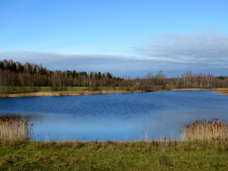 8.novembris, cenšos fotogrāfijās noķert zilas debess pleķīšus.