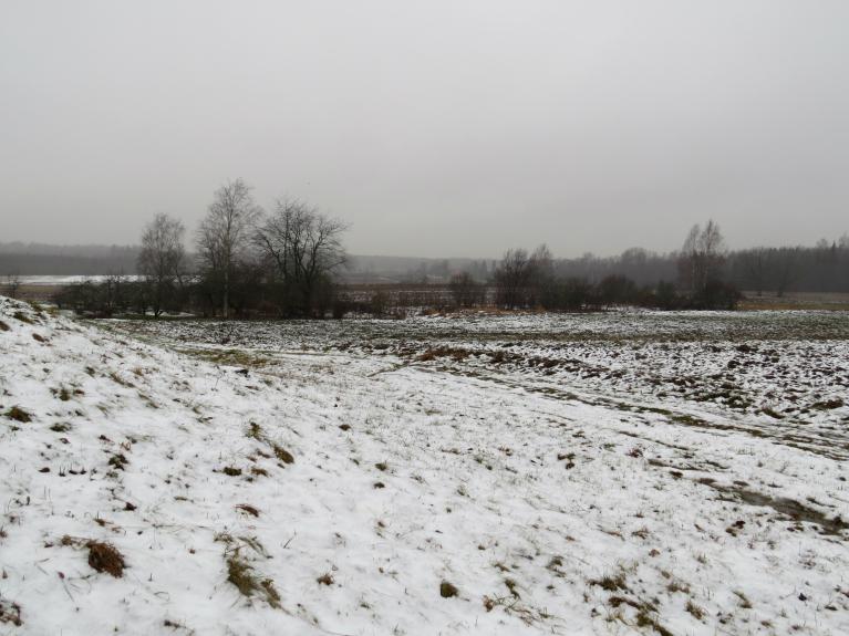 7. janvāris - lietus strauji kausē sniega kārtu.