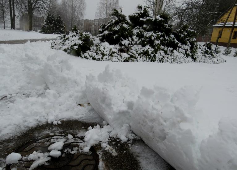 6. janvāra rīts, sniega segas biezums 5 cm, traktoriņš cītīgi tīra sniegu.