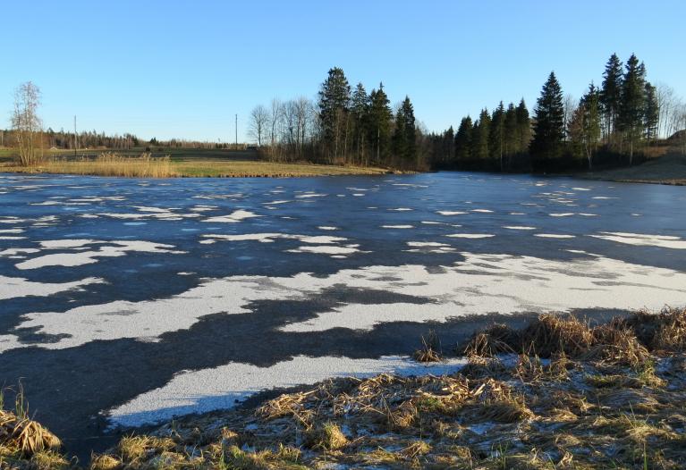 6. februāra pusdienlaiks. Uz jaunā lediņa neliels sniega dekors