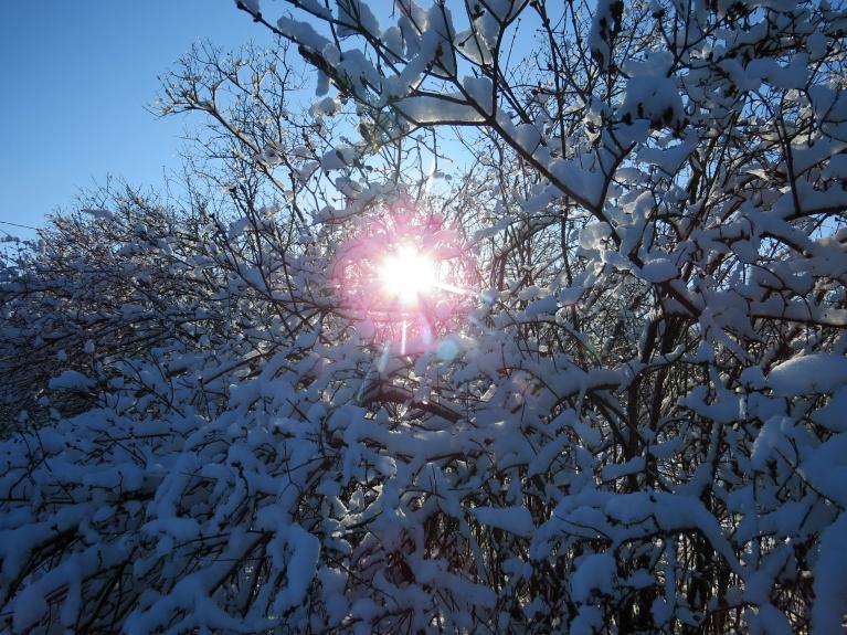 """Saulīte šodien spoža, bet ar """"zobiem""""."""