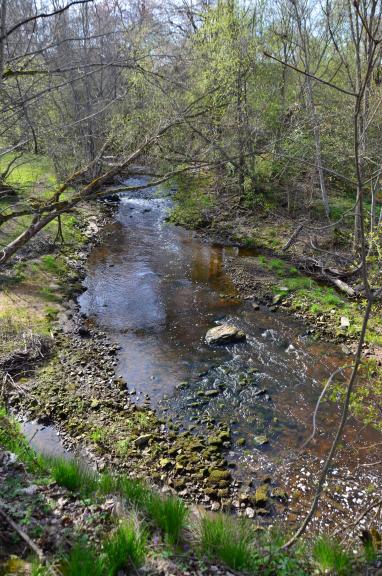 Vizlas upes dabas taka 1. maijā. Šī ir ļoti skaista taka, viss labi saredzams, upīte dzīva, čalojoša.