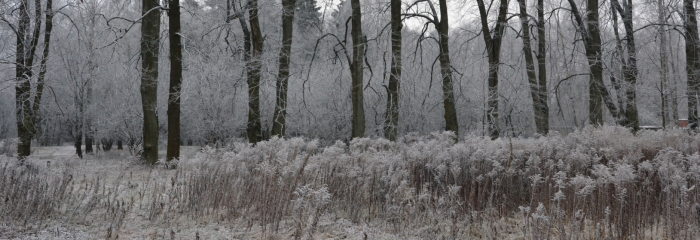 Pirmais ziemas mēģinājums