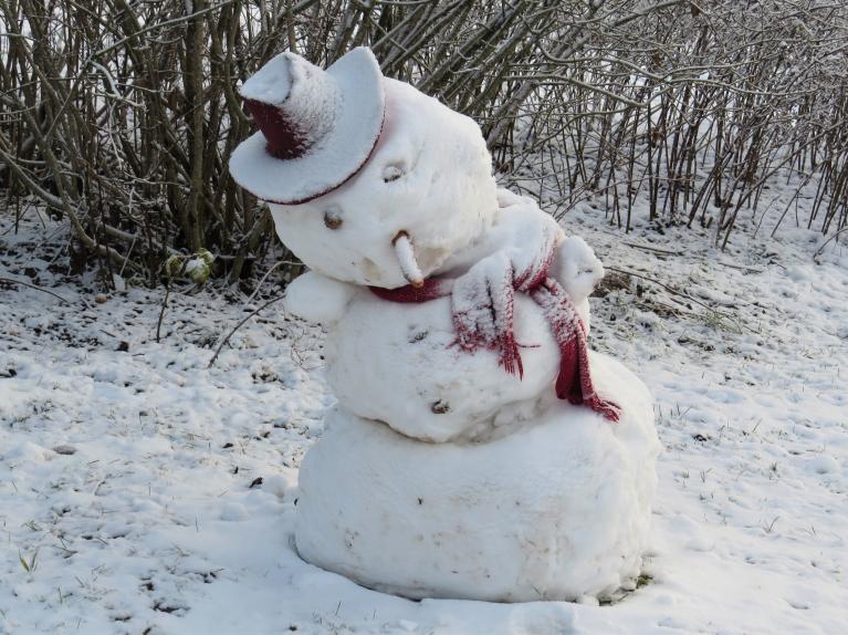 26. decembra rīts- sniega vīrs ir manāmi saguris, bet vēl turas.