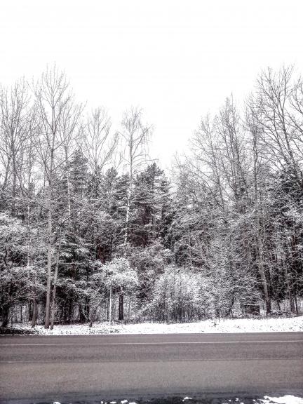 Silts Februāris, bet mēneša beigās uzsniga sniegs !
