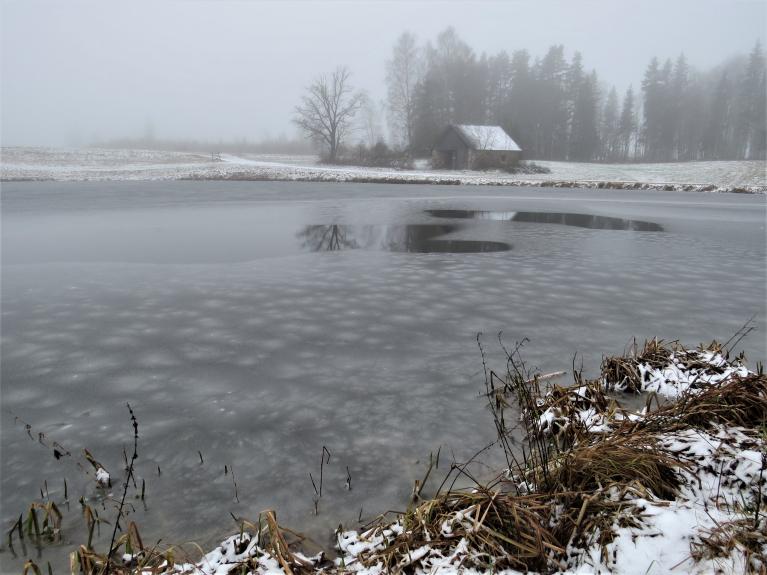 Decembris ik pa laikam sāka atgādināt, kāda izskatās ziema.