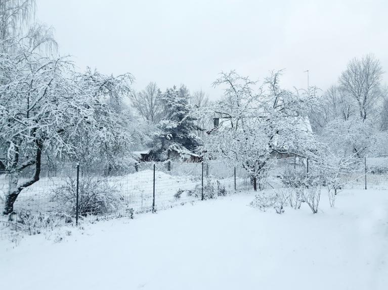 Decembris. Sniegs otrajos Ziemassvetkos.