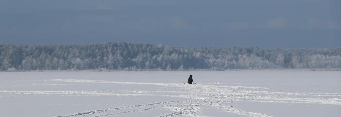 Februāra sākumā pastiprināsies sals