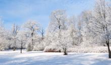 Vēlviens aukstuma vilnis