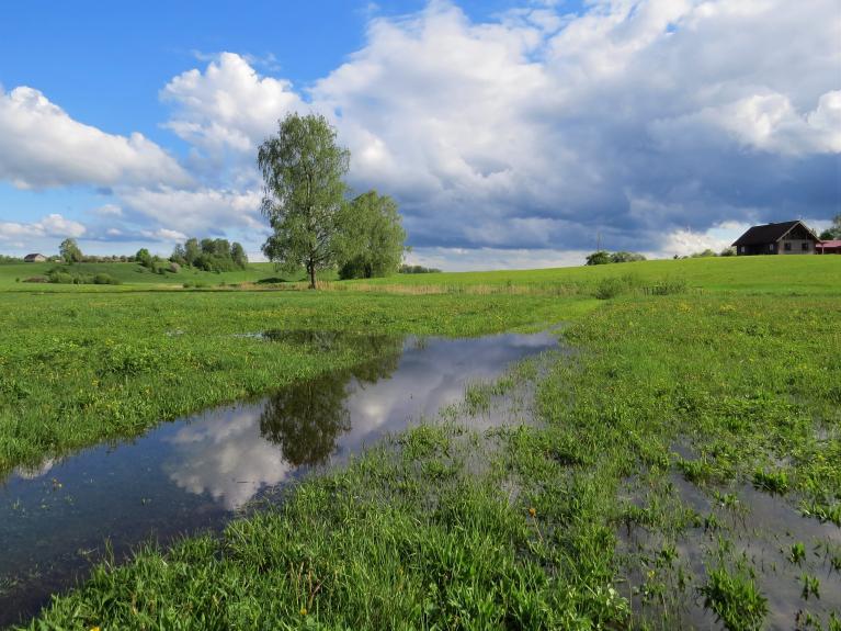 Neatceros, kad maija mēnesī vēl tā izskatītos ielejas pļavas.