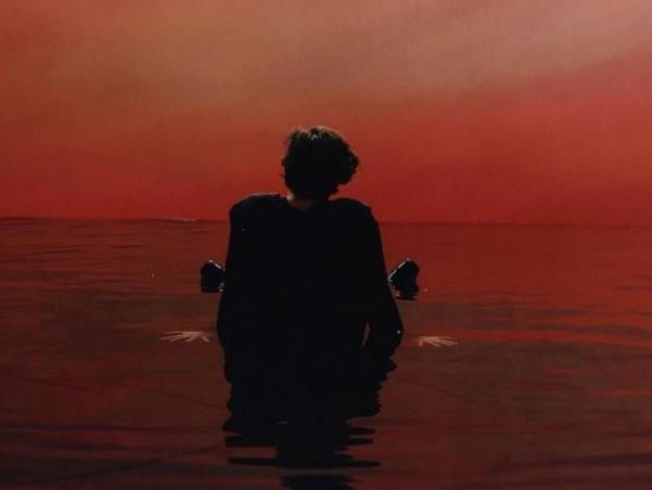 One Direction's Harry Styles in love with his debut solo album