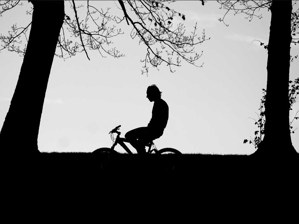 42#Est Veronese in bici