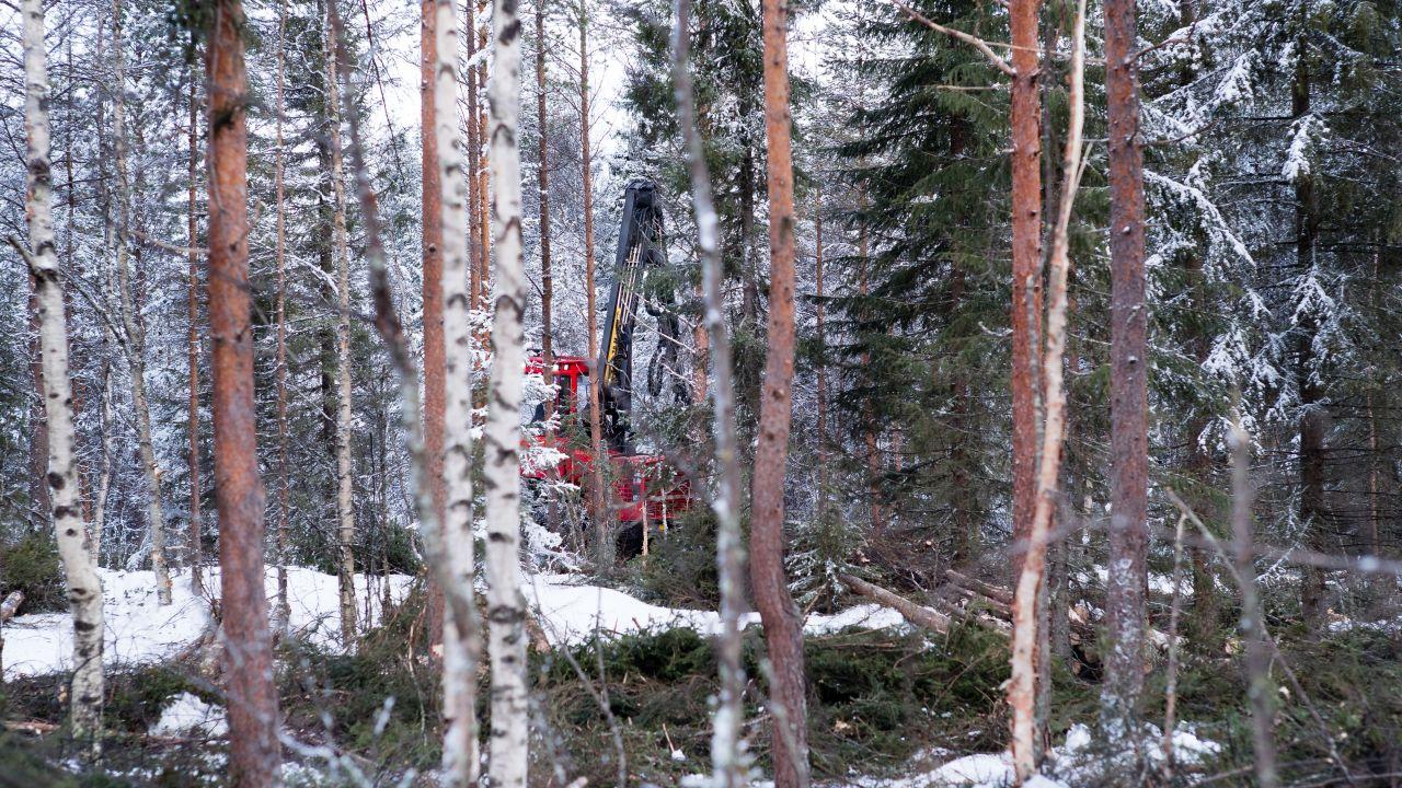 metsäkoneenkuljettaja vapaat työpaikat Nokia