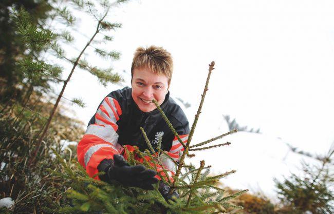 Anne Immonen on työskennellyt Joroisten taimitarhalla vuodesta 2002.