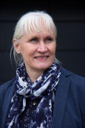 puurakentamisen liiketoiminnan kehittämisen professori Asta Salmi
