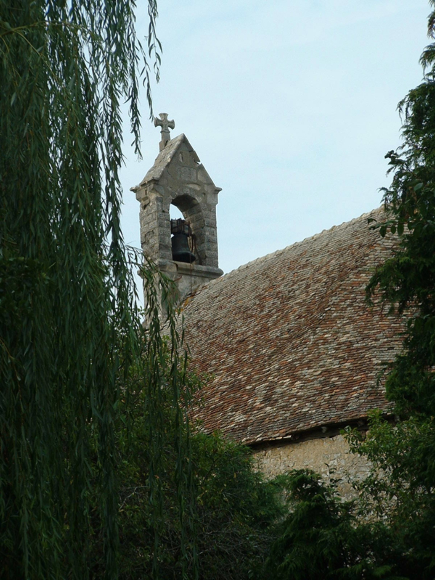 Patrick FORGET - www.sagaphoto.com - Saint Lubin-des-Cinq-Fonts