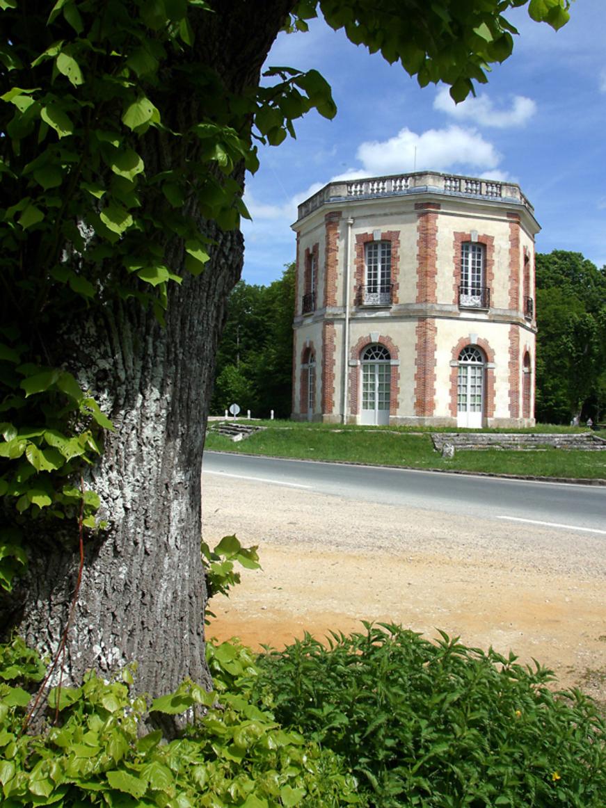 Patrick FORGET - www.sagaphoto.com - Bastions en forêt de Dreux