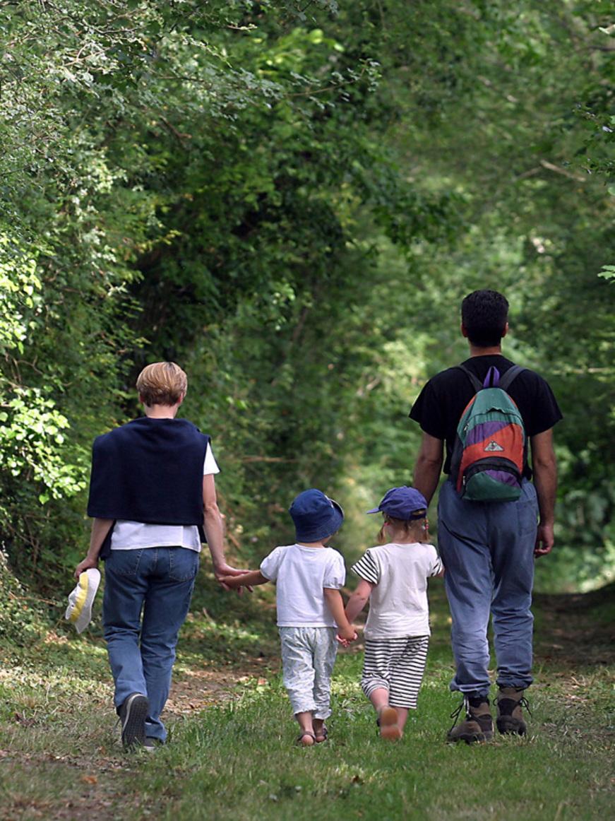 © Patrick FORGET - www.sagaphoto.com - Forêt domaniale de Senonches - rendez-vous au rond de Condé