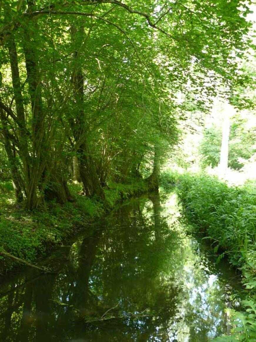 © CDT28 - Vallée de la Voise et de l'Aunay