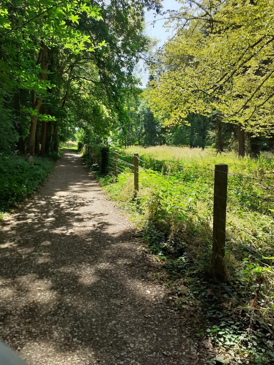 CD28 - Sentier du parc de gourdez et bois de Morancez