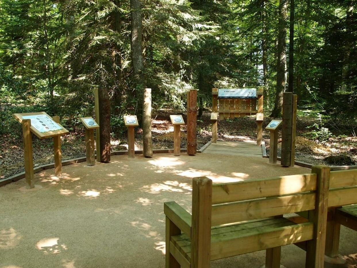 Nadia DESILLES - Sentiers pédagogique 'L'Orée des Bois