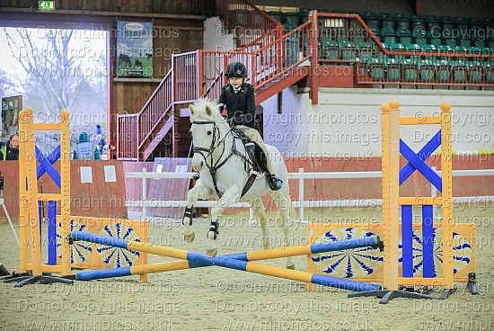 5 Jan 2020 - New Year Showjumping