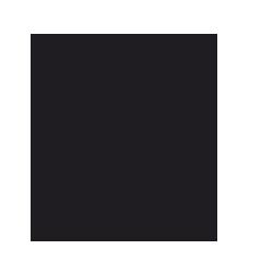 Insektsskådning