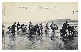 1912_gd.jpg