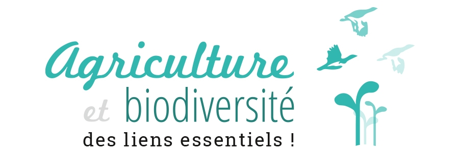 logo_colloque.JPG