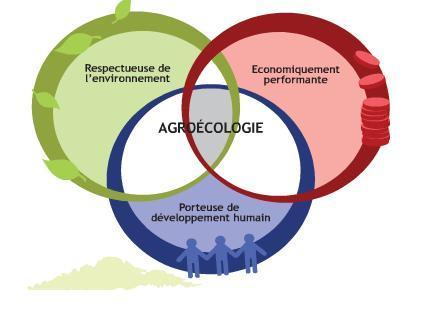 agroeco_schema.jpg